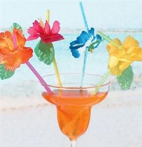 Flower-Straws-290x300