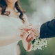 backyard-staten-island-wedding